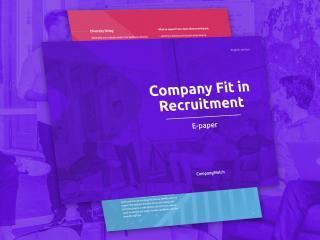 How to assess Company Fit?